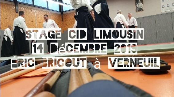 191214 Video du stage Verneuil.jpg - 71,26 kB